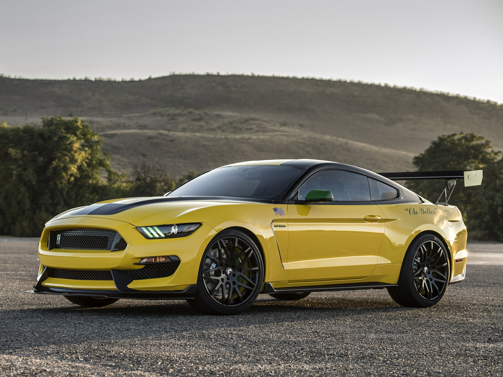 2016 Shelby Mustang GT350 Ole Yeller