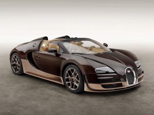 Bugatti Veyron Grand Sport Roadster Vitesse Rembrandt (2014)