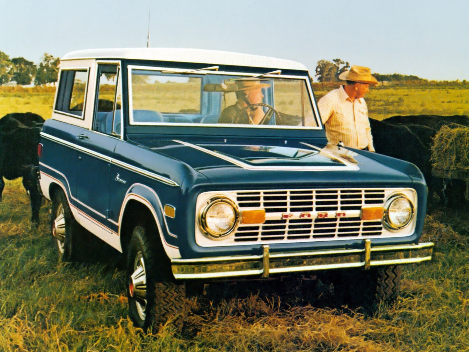 Ford Bronco Wagon U100 1977